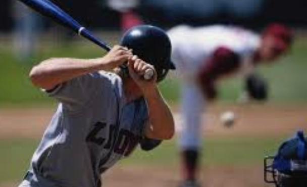 泰金球版分析-體育投注專家